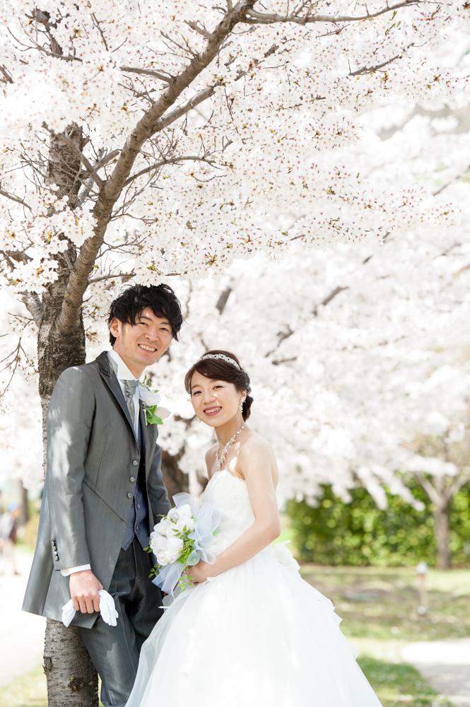 前撮り桜ロケーション
