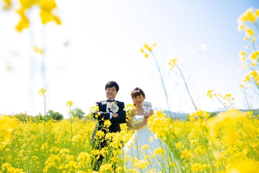 小布施の菜の花ロケーション