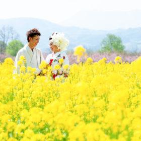 菜の花の前撮り長野