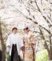 桜ロケーション長野