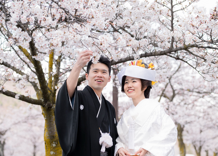 和装前撮り桜ロケ